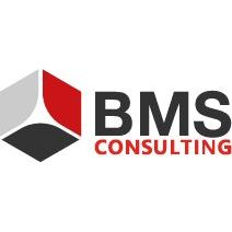 BMS Consulting GmbH